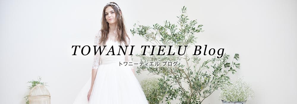 blog_banner_towani