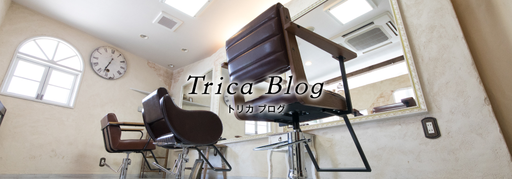 trica-blog-banner-pc